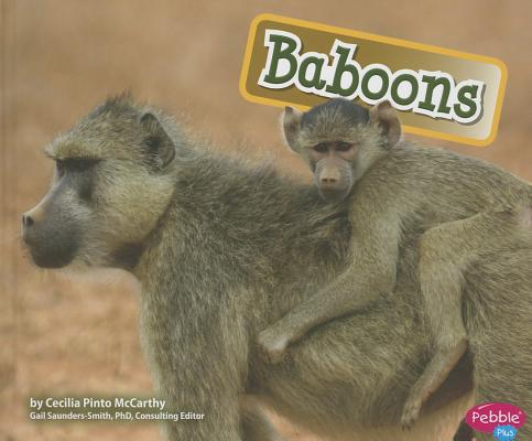 Baboons By Mccarthy, Cecilia Pinto